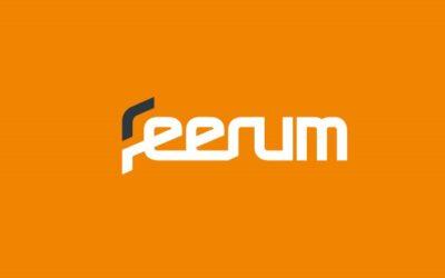 CASE STUDY: Strategia marki i identyfikacja wizualna dla FEERUM SA